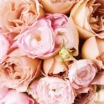 toms river florist