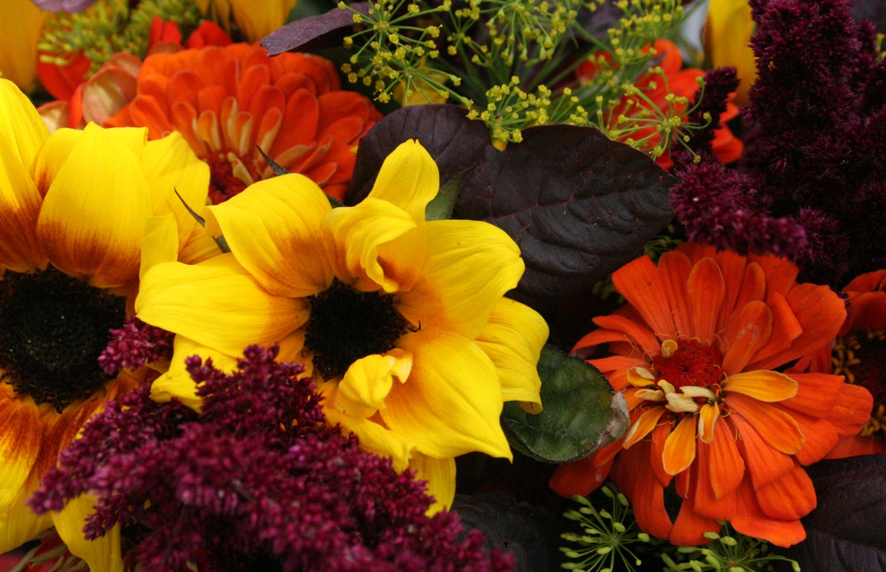 The Top 8 Flowers To Decorate Your Home With This Fall