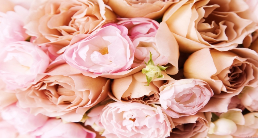 7 Top Ways to Save Money on Your Wedding Flowers with a Toms River Florist